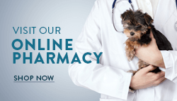 Advance Animal Care Online Pharmacy